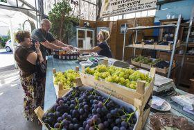 Verkoop van druiven gestart